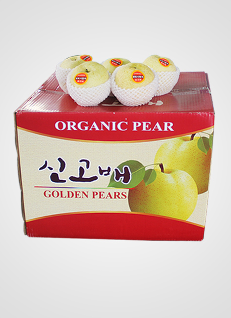 Golden Pears 黄金梨